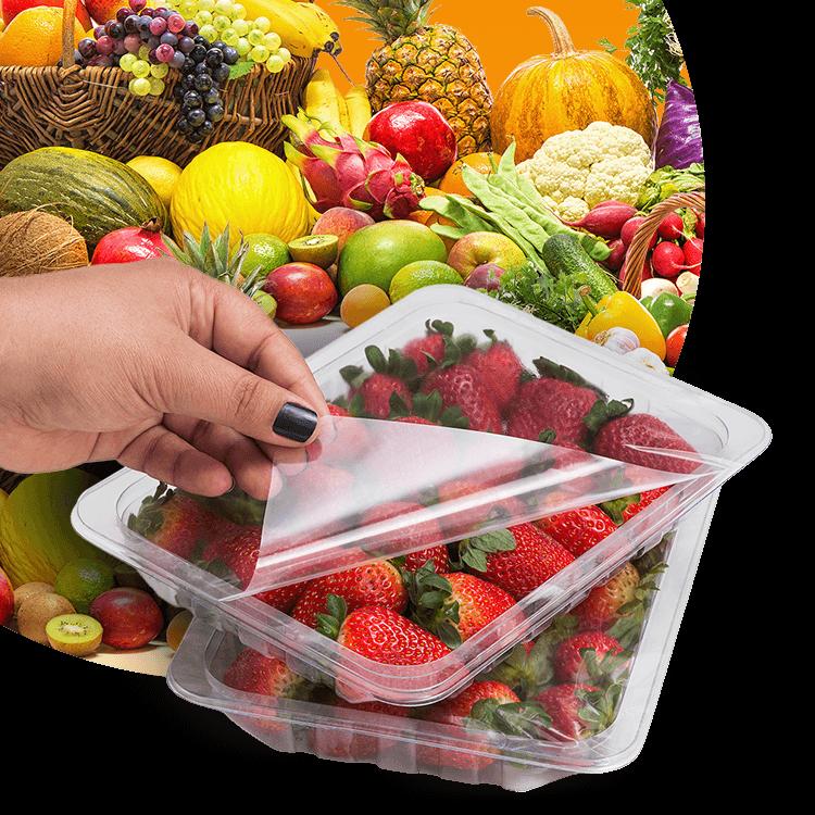 FLV (Frutas, Legumes e Verduras)